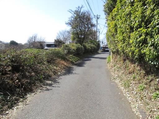 20110319・散歩07