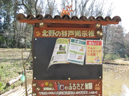 20110319・散歩14