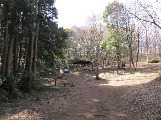 20110319・散歩17-8