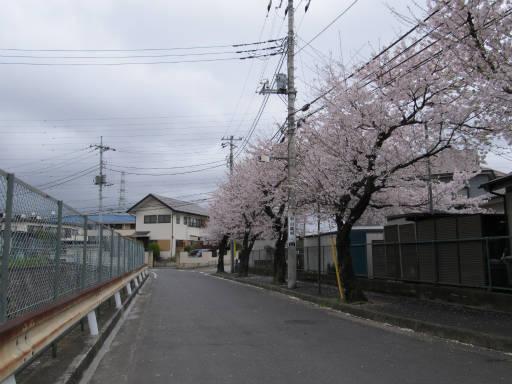 20110409・散歩空 06