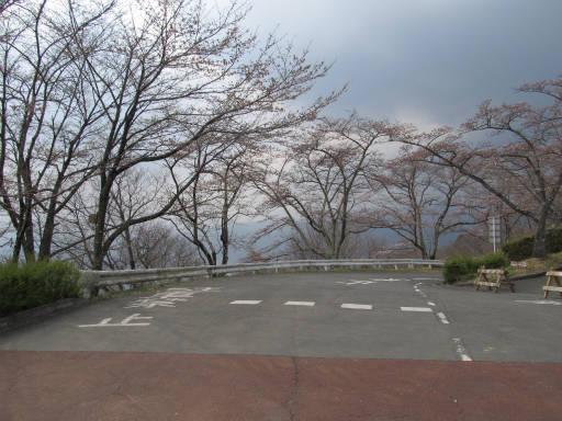 20110411・美の山 06