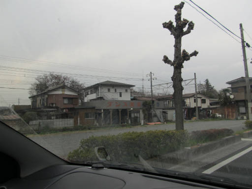 20110411・美の山 01