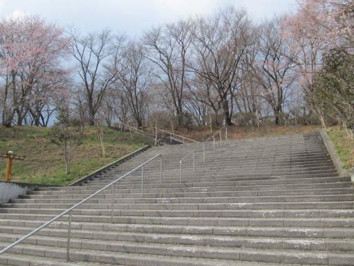 20110411・美の山 04