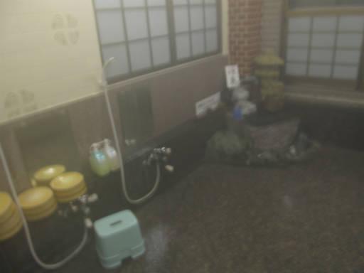 20110515・上野鉱泉06