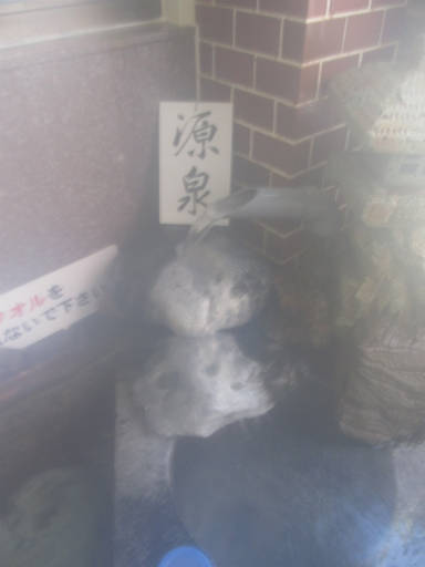 20110515・上野鉱泉11-12
