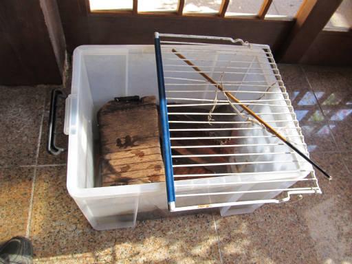 20110515・上野鉱泉21