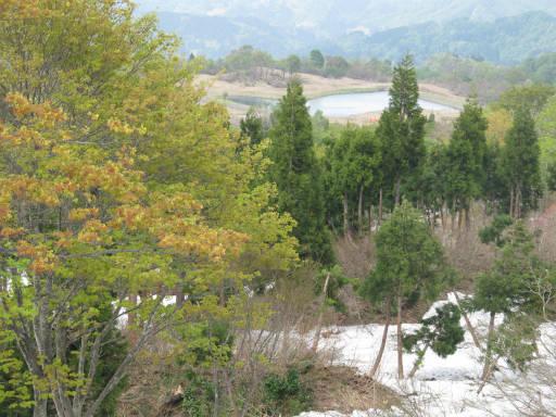 20110515・菖蒲高原上部05