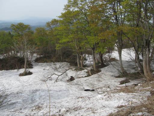 20110515・菖蒲高原上部01