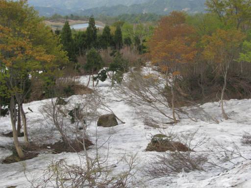 20110515・菖蒲高原上部04