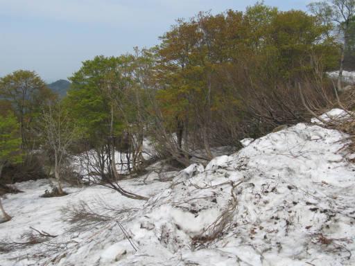 20110515・菖蒲高原上部07