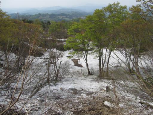 20110515・菖蒲高原上部13