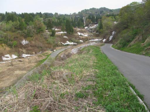 20110515・大厳寺12