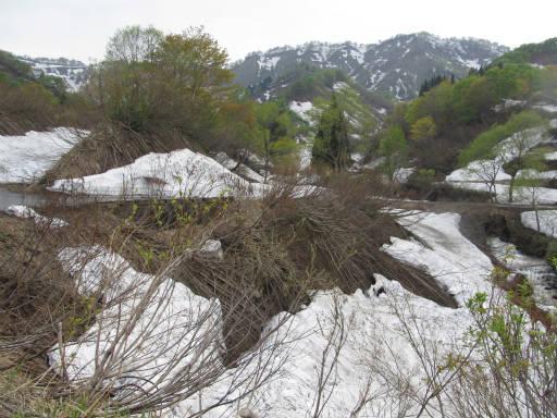 20110515・大厳寺09