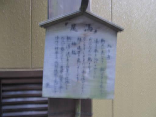 20110515・松之山温泉03