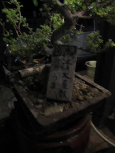 20110515・松之山温泉21