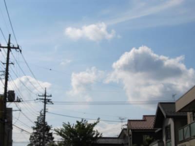 20110524・空・小手指が原花畑06