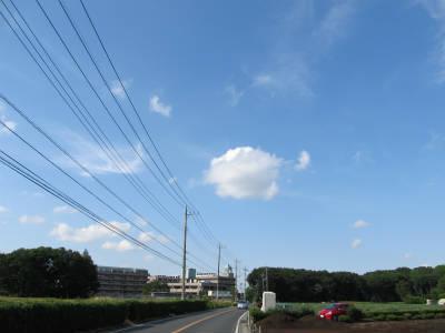 20110524・空・小手指が原花畑09