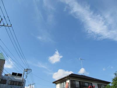 20110524・空・小手指が原花畑07