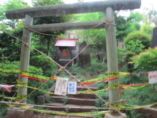 20110522・荒幡富士散歩08
