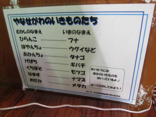 20110522・荒幡富士散歩24