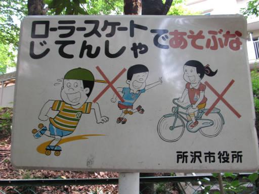20110604・狭山湖初夏散歩04
