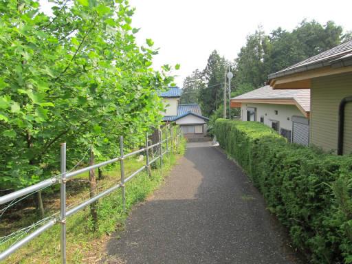 20110604・狭山湖初夏散歩10