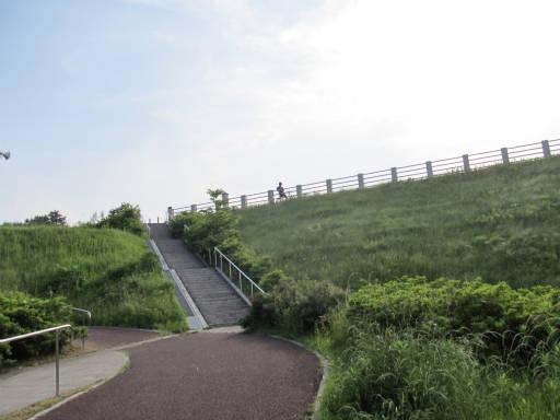 20110604・狭山湖初夏散歩13