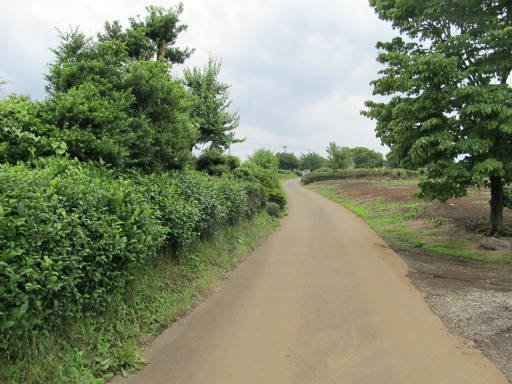 20110619・砂川遺跡24