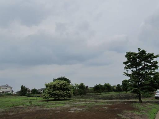 20110619・空2・砂川2