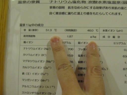 20110625・利休07