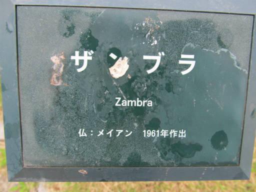 20110625・敷島公園ばら園のバラ04-1