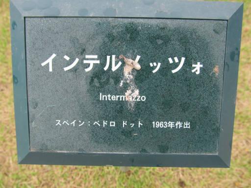 20110625・敷島公園ばら園のバラ10-1