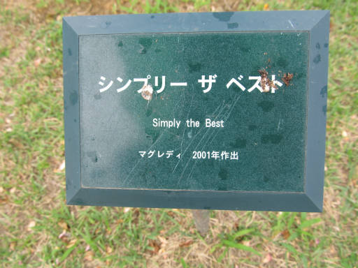 20110625・敷島公園ばら園のバラ33-1
