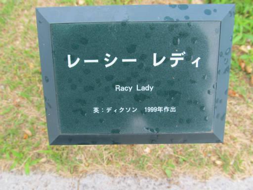 20110625・敷島公園ばら園のバラ36-1