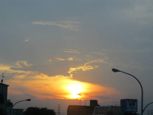 20110714・多磨駅21