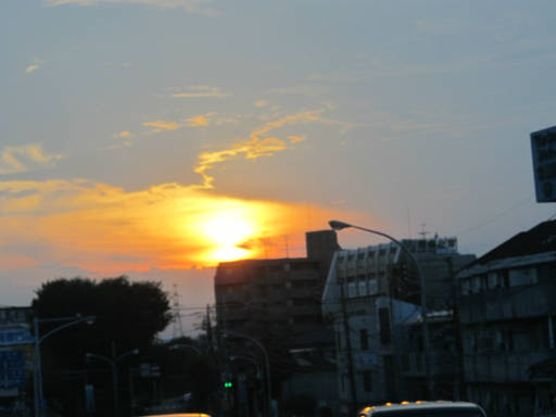 20110714・多磨駅22