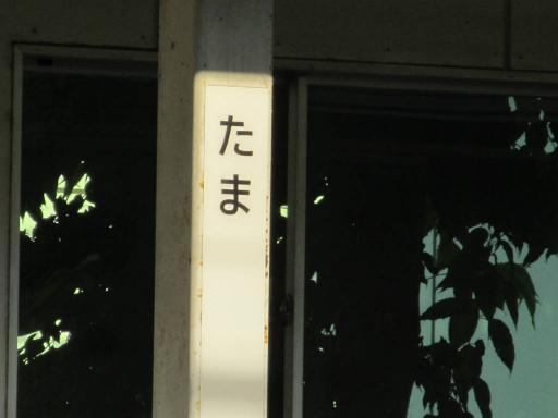 20110714・多磨駅ネオン1