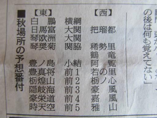 20110725・相撲3