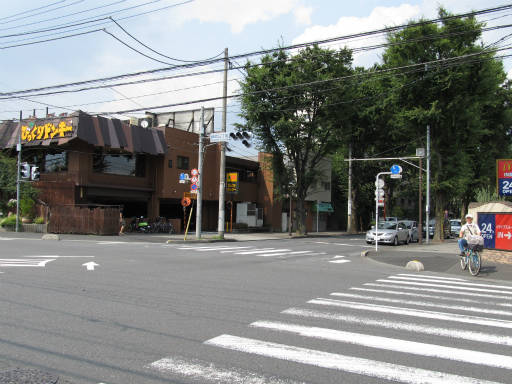 20110816・新所沢散歩16