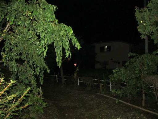 20110824・狭山湖夜の散歩03