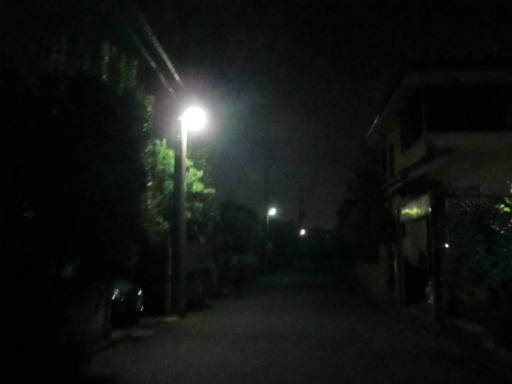 20110824・狭山湖夜の散歩25