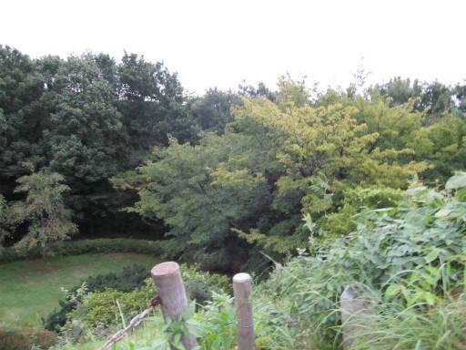 20110827・荒幡富士08