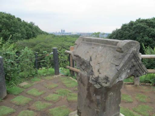20110827・荒幡富士10