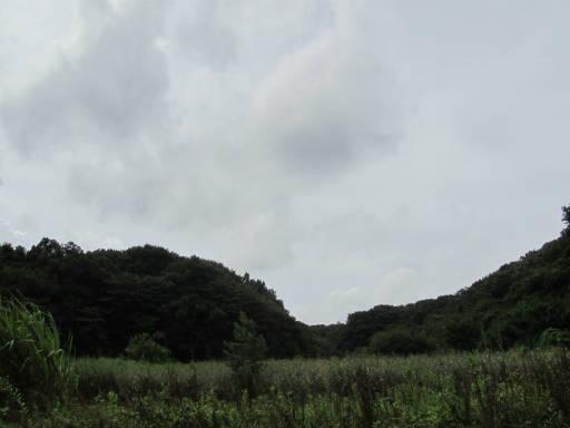 20110904・自然観察会空01