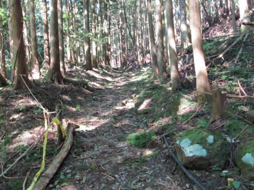 20110910・武甲山2-02・5丁目