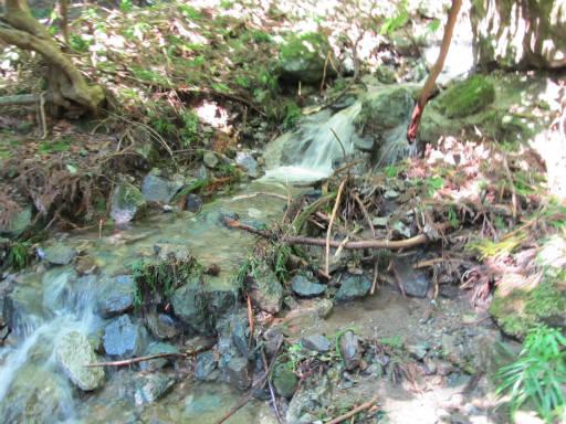 20110910・武甲山2-32