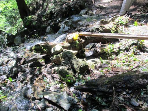 20110910・武甲山3-05