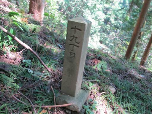 20110910・武甲山3-14