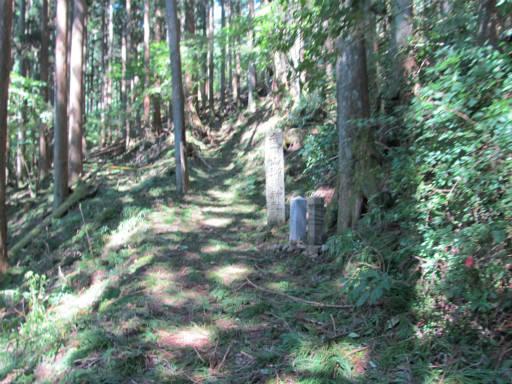 20110910・武甲山3-15
