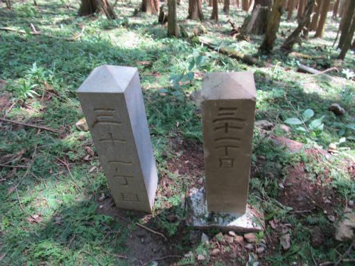 20110910・武甲山3-27